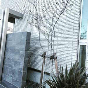 積水ハウス外壁 ダインコンクリート