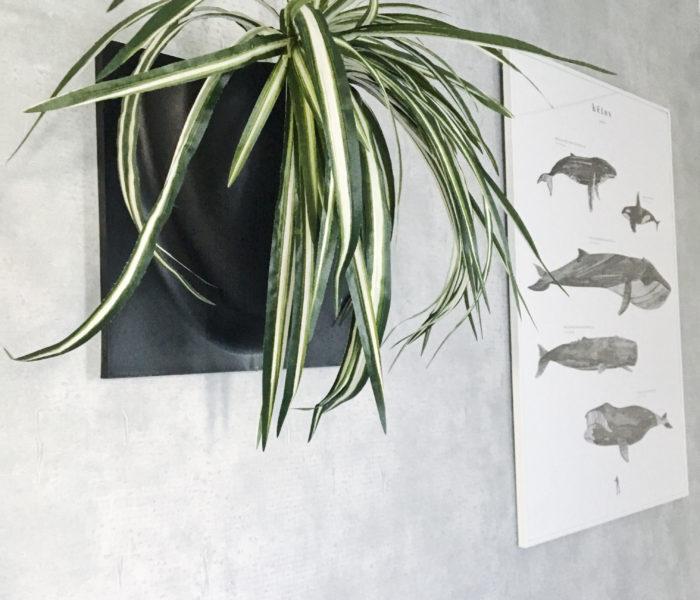 """★北欧雑貨★コペンハーゲン発の""""Vertiplants""""を玄関に飾りました"""