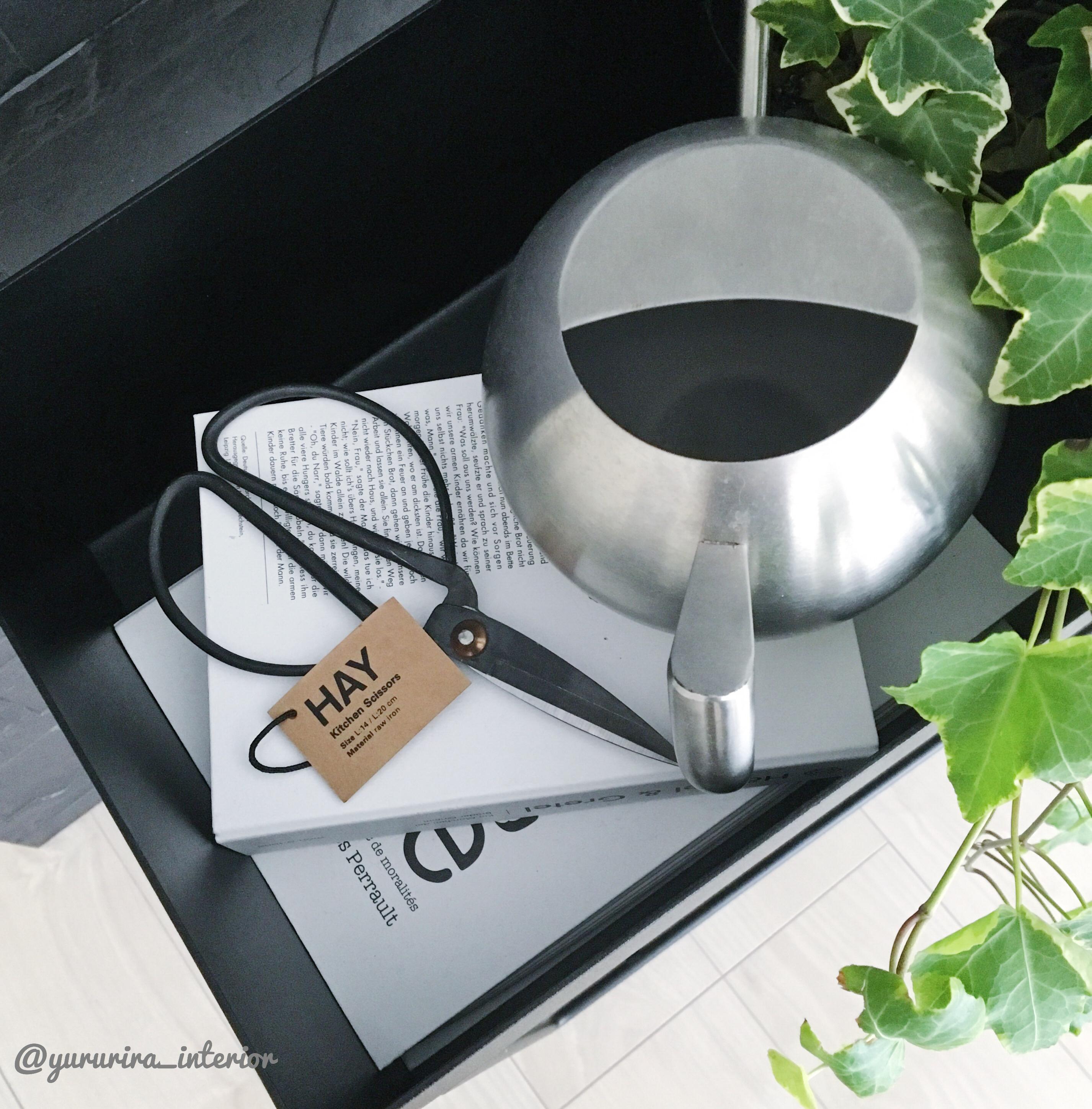 ★北欧雑貨★HAYの鉄はさみとリビングの植物たち