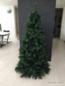 リアル クリスマスツリー