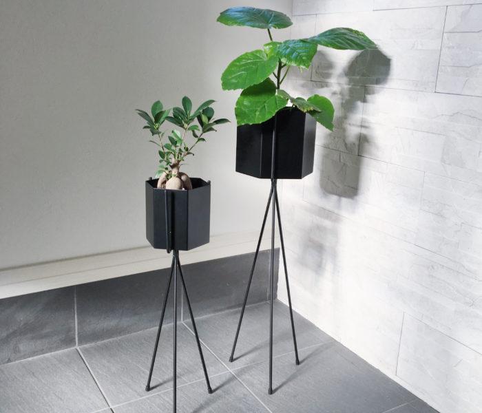 IKEAのまるでコンクリな軽量プラ鉢と新入り観葉植物♪