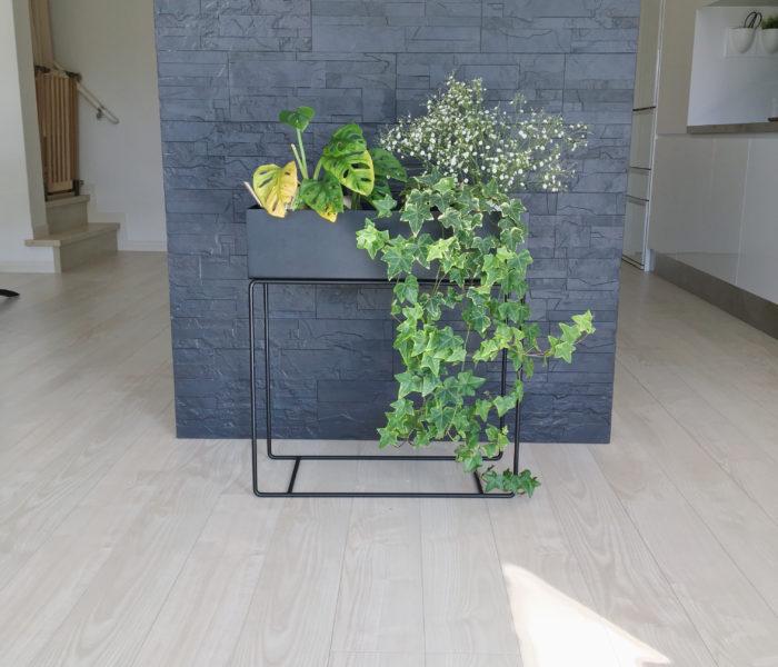 春待ちインテリア♪プラントボックスに飾ったお花