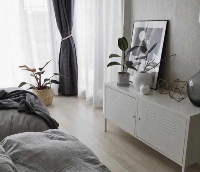 主寝室★観葉植物インテリアと最近のロジョコンゴさん