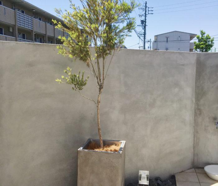 庭活★新たな植物と鉢植えが断然おしゃれ変身するマルチング材♪