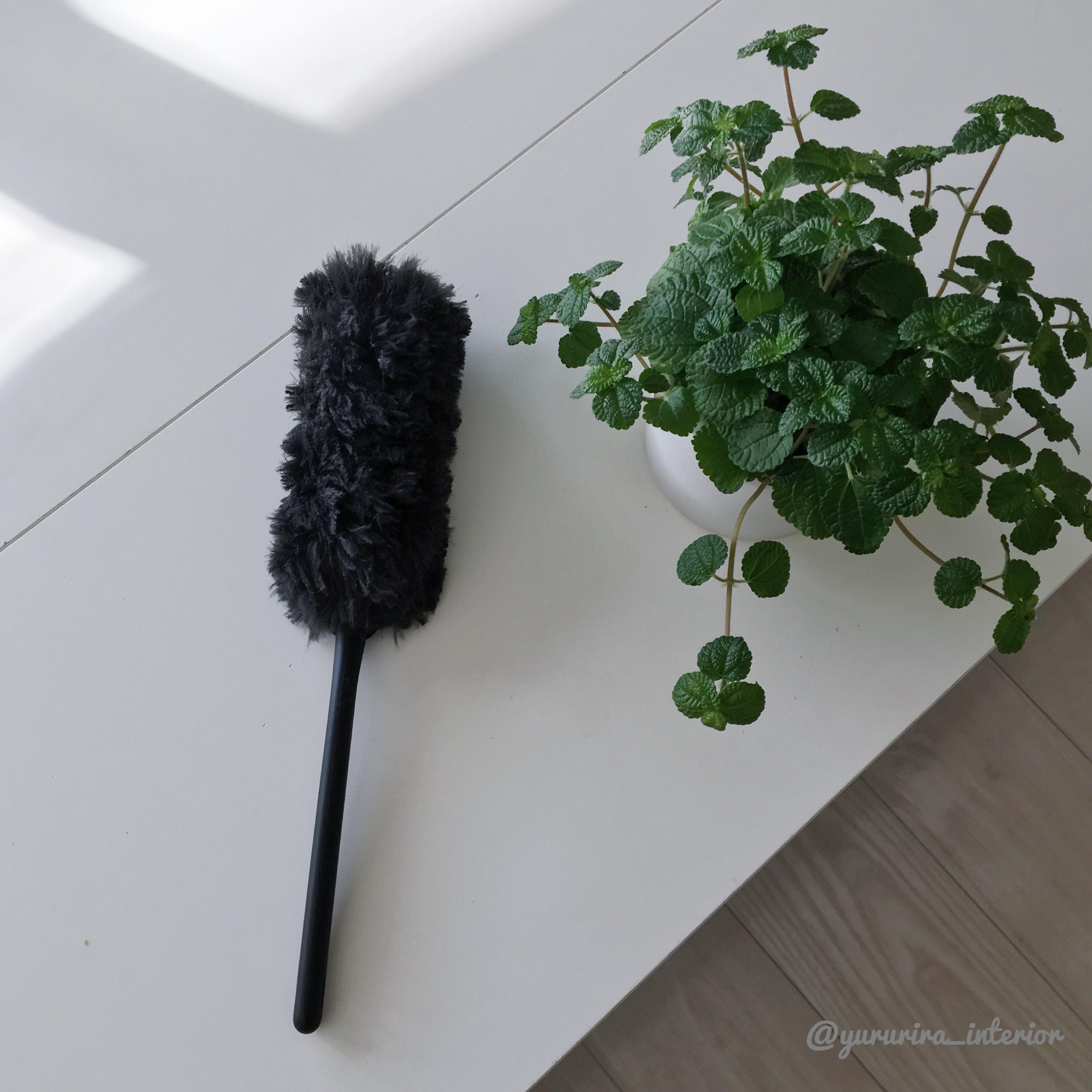 黒いモフモフ…♡ 掃除が楽しくなるクイックルハンディ ブラック★