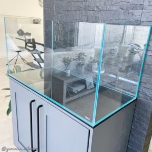 ADA水槽 水槽インテリア