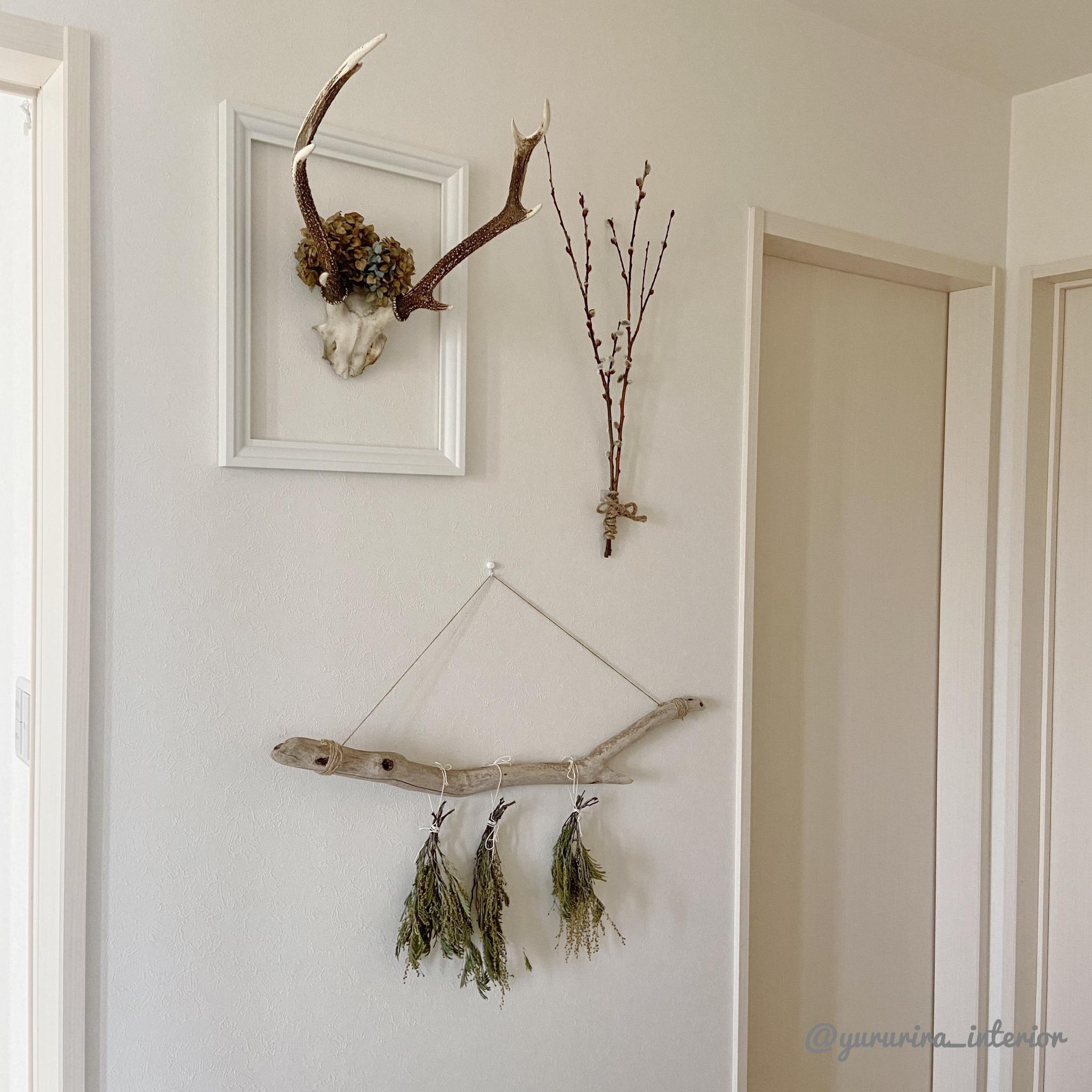 100均のアレとドライフラワーで!植物×壁掛けの新しいスタイル♪