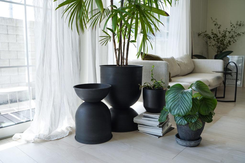 新しく買った大型観葉植物と北欧fermLIVINGの鉢カバー